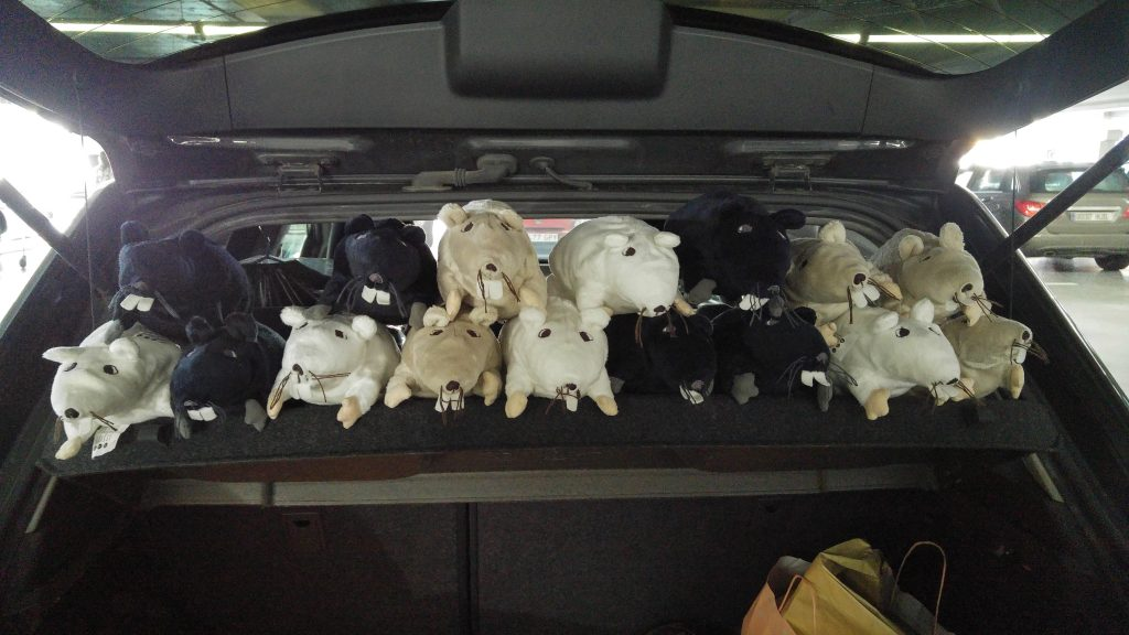 Maletero de mi coche lleno de RATs
